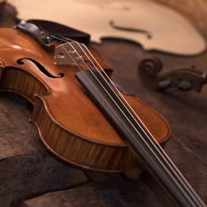 Seine et Marne Lutherie Violons et Guitares